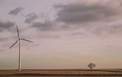 Üks kallimaid investeeringuid praegu on tuuleenergia arendamine.